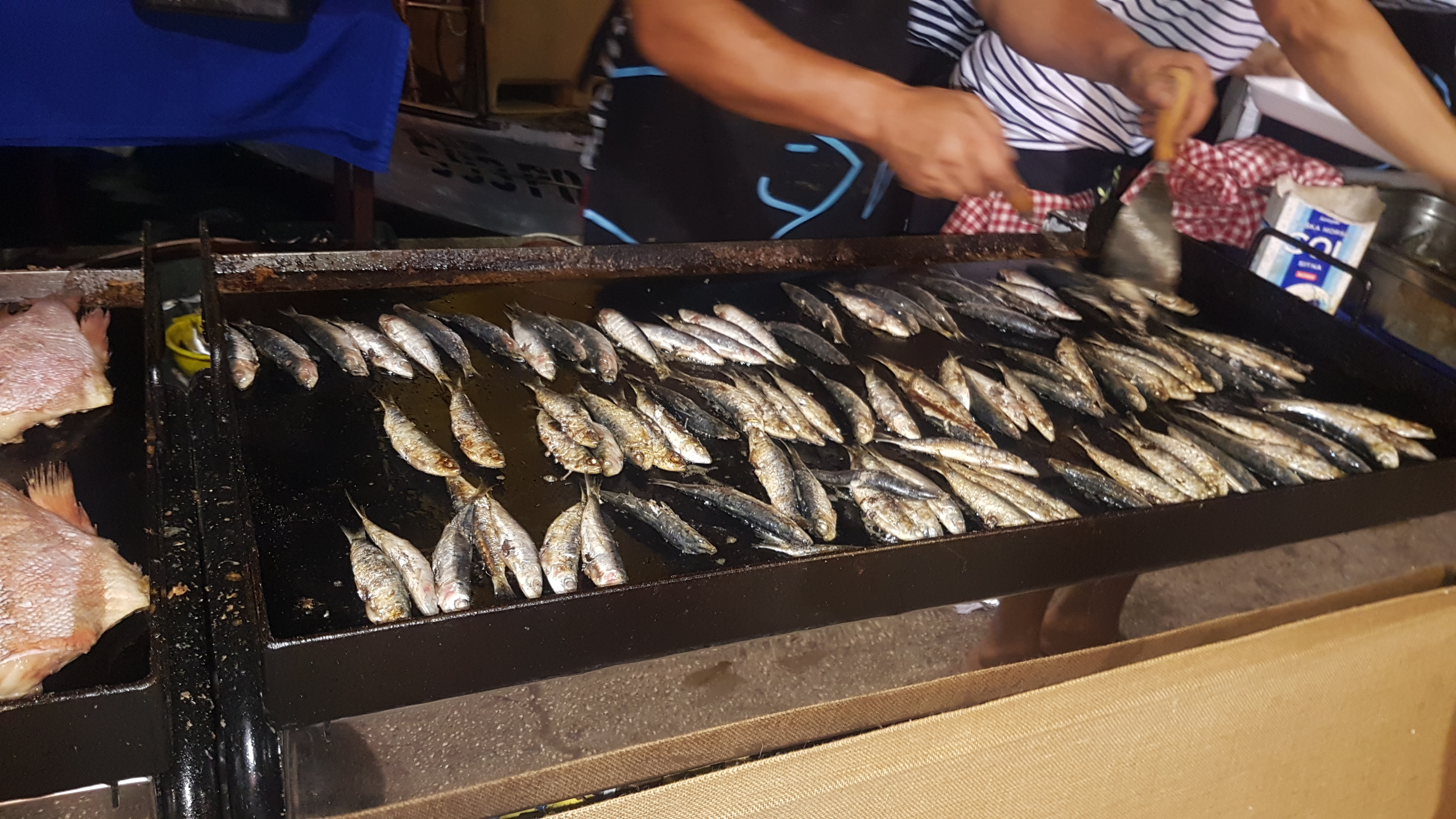 FISH FESTIVAL IN VRSAR