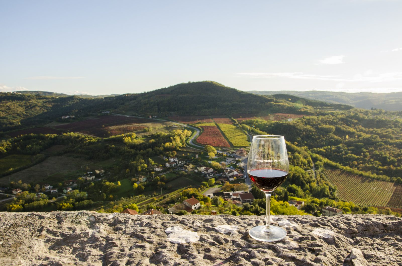 THE FESTIVAL OF TERAN WINE AND TRUFFLES IN MOTOVUN